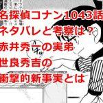 コナン最新話1043話のネタバレと考察(感想)は?世良秀吉が羽田家に養子入りの理由とは?